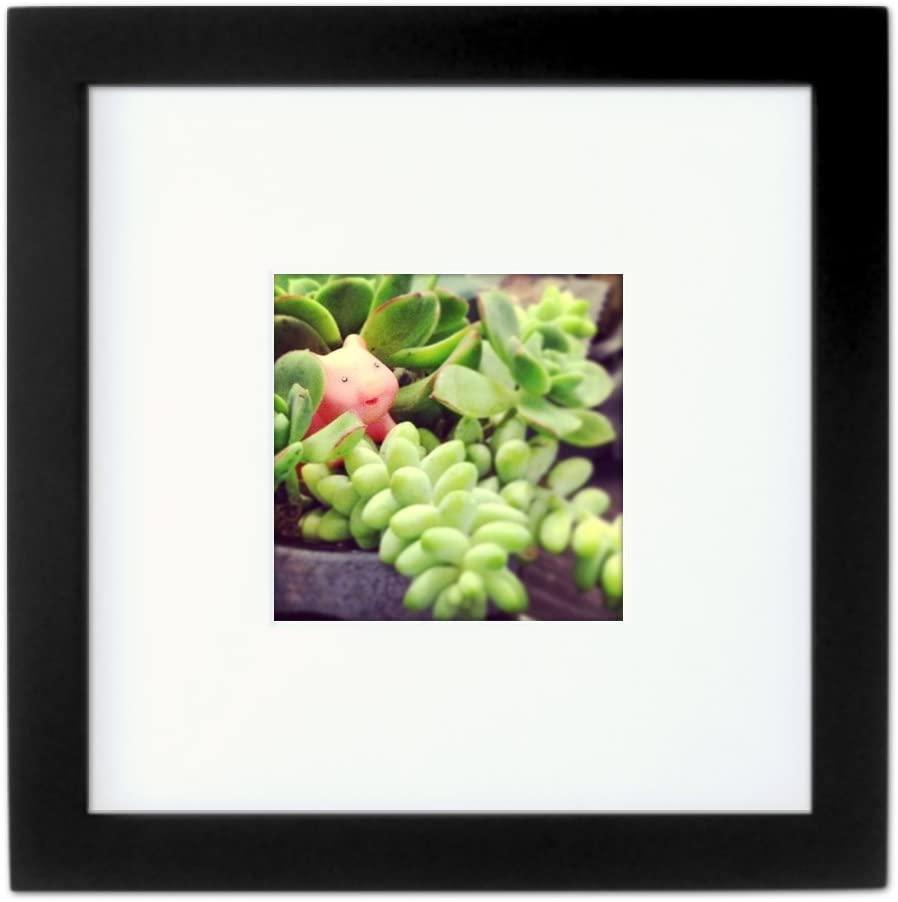 Amazon.com - Tiny Mighty Frames - Wood, Square, Instagram, Photo Frame, 4x4 (Mat), 8x8 (1, Black) -