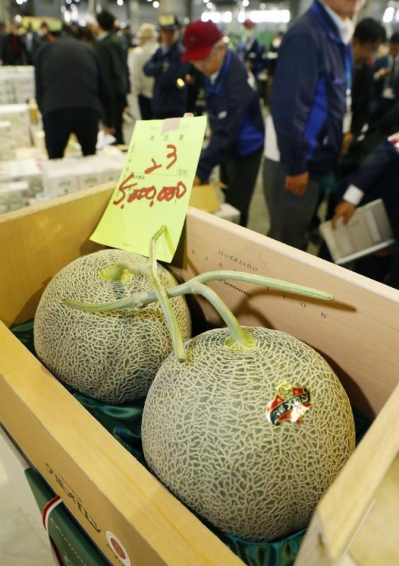 Hokkaido melons fetch record $45,500 at season's 1st auction