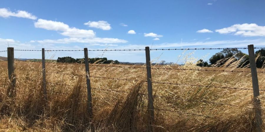Barbed Wire Fencing: What You Need to Know