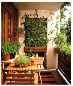 Amazing Gardening Balcony Low Budget 14