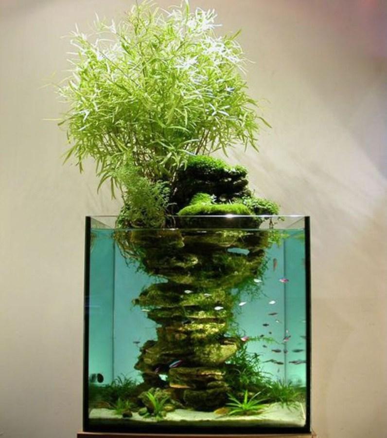 Amazing Aquarium Design Ideas Indoor Decorations 19