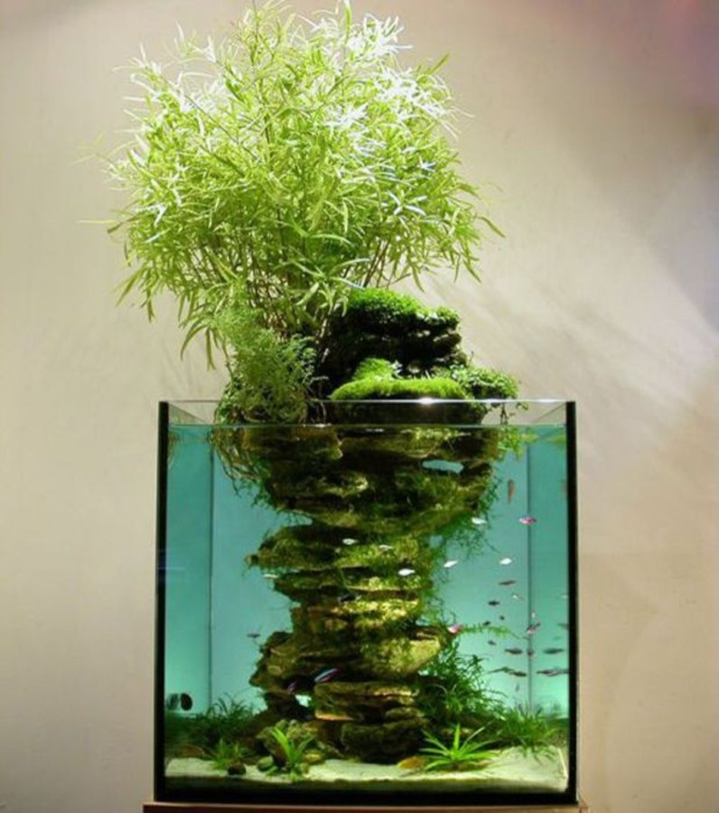 Amazing Aquarium Design Ideas Indoor Decorations 19