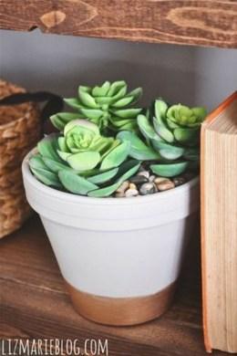 Amazing Diy Succulents Indoor Decorations 18