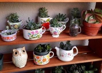 Amazing Diy Succulents Indoor Decorations 28