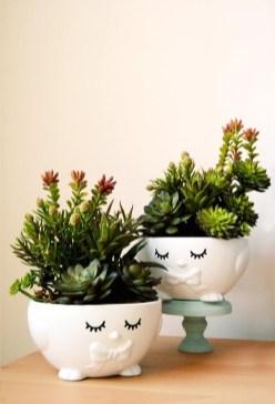 Amazing Diy Succulents Indoor Decorations 33