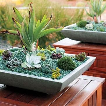 Amazing Diy Succulents Indoor Decorations 34