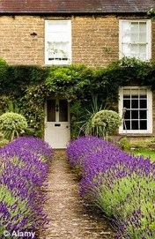 Amazing Low Maintenance Garden Landscaping Ideas 04