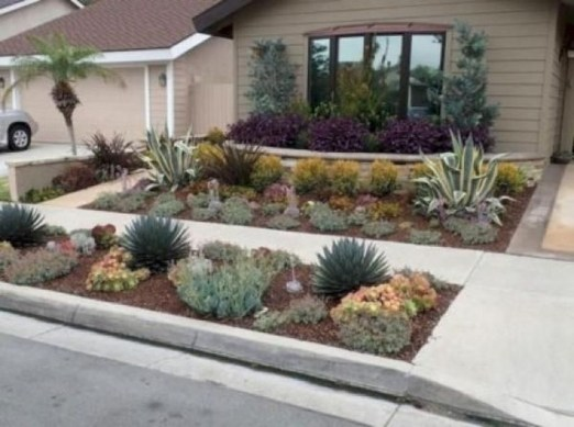 Amazing Low Maintenance Garden Landscaping Ideas 12