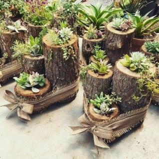 Amazing Succulents Garden Decor Ideas 04