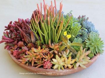 Amazing Succulents Garden Decor Ideas 28
