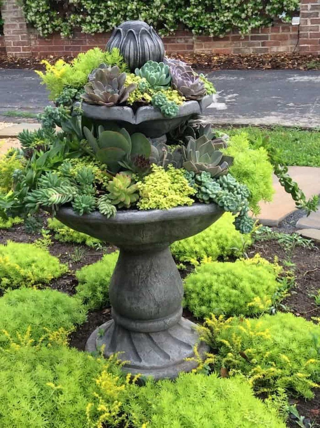 Amazing Succulents Garden Decor Ideas 33