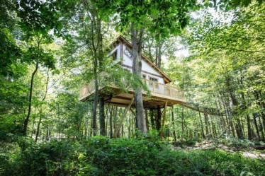 Awesome Treehouse Masters Design Ideas Will Make Dream 24