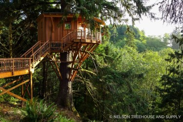 Awesome Treehouse Masters Design Ideas Will Make Dream 31