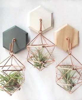 Creative Hanging Air Plants Decor Ideas 16