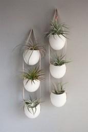 Creative Hanging Air Plants Decor Ideas 22