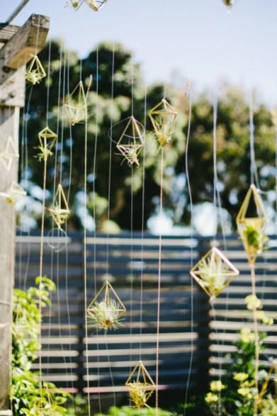 Creative Hanging Air Plants Decor Ideas 36