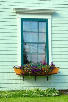 Amazing Windows Flower Boxes Design Ideas Must See23