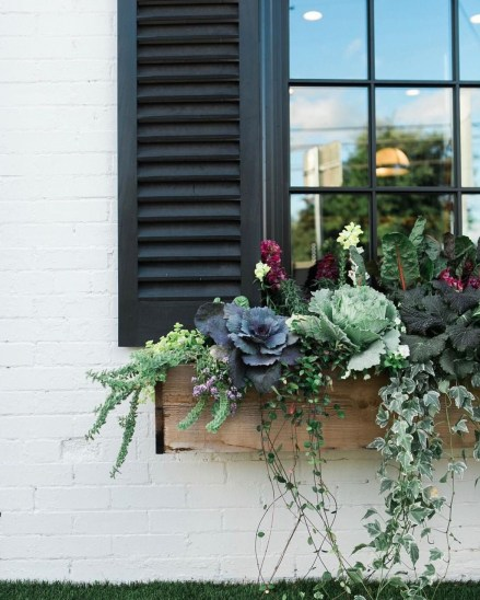 Amazing Windows Flower Boxes Design Ideas Must See26