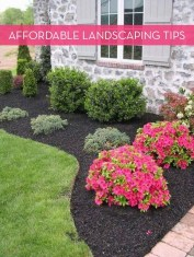 Awesome Backyard Landscaping Ideas Budget16