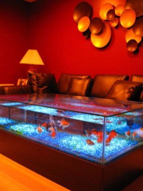 Amazing Aquarium Feature Coffee Table Design Ideas27