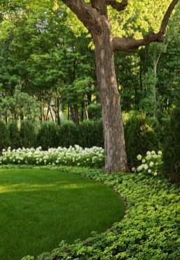 Amazing Big Tree Landscaping Ideas23