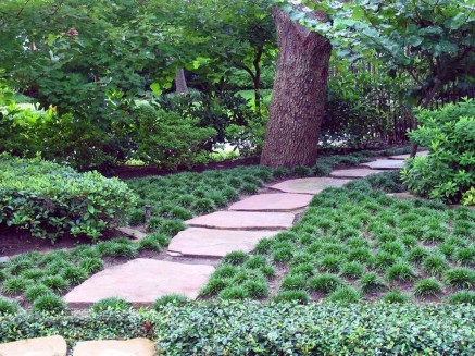 Amazing Grass Landscaping For Home Yard10