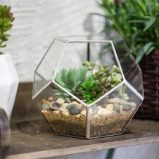 Awesome Ideas To Make Glass Jars Garden For Your Home Decor13