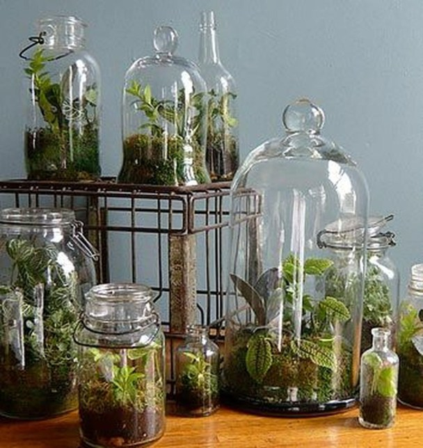 Awesome Ideas To Make Glass Jars Garden For Your Home Decor18
