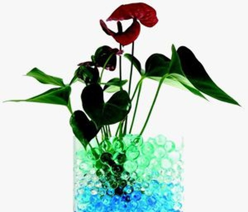 Inspiring Cool Water Beads For Indoor Decoration01