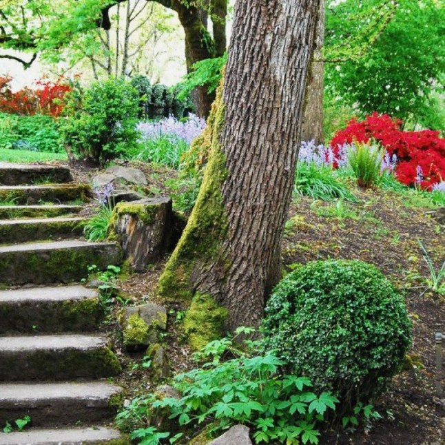 Awesome Diy Garden Path Inspiration Ideas09