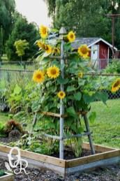 Impressive Front Yard Landscaping Garden Designs Ideas34