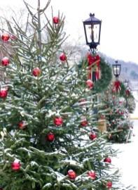 Amazing Outdoor Christmas Trees Ideas 02