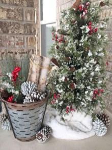 Amazing Outdoor Christmas Trees Ideas 11
