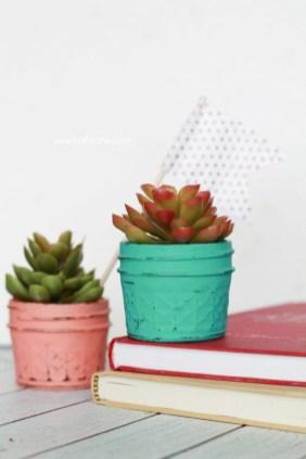 Cheap Succulent Plants Decor Ideas You Will Love16