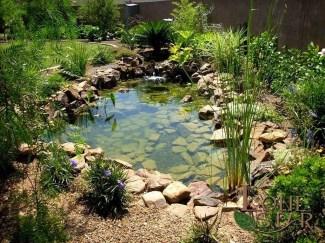 Popular Pond Garden Ideas For Beautiful Backyard35