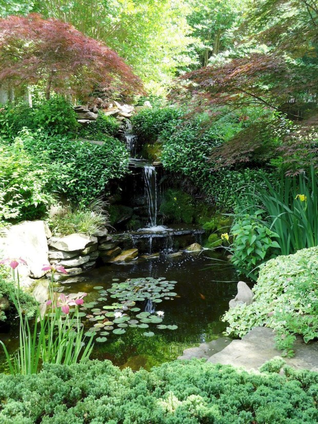 Popular Pond Garden Ideas For Beautiful Backyard41