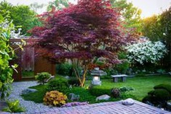 Amazing Big Tree Landscaping Ideas17