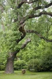 Amazing Big Tree Landscaping Ideas34