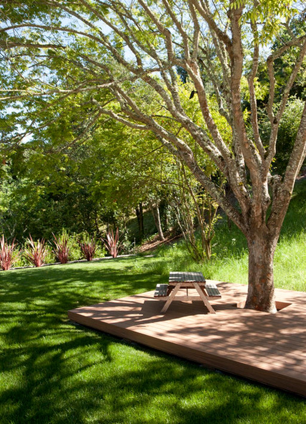 17 Amazing Big Tree Landscaping Ideas - HOMISHOME