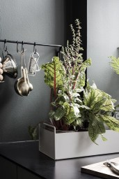Stunning Plant For Your Dinning Room Ideas12