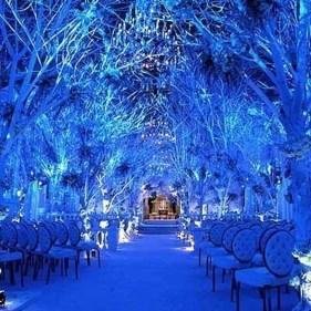 Awesome Winter Wonderland Wedding Decoration01