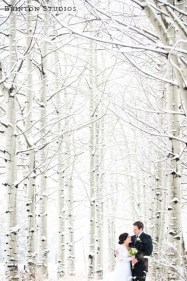 Awesome Winter Wonderland Wedding Decoration05
