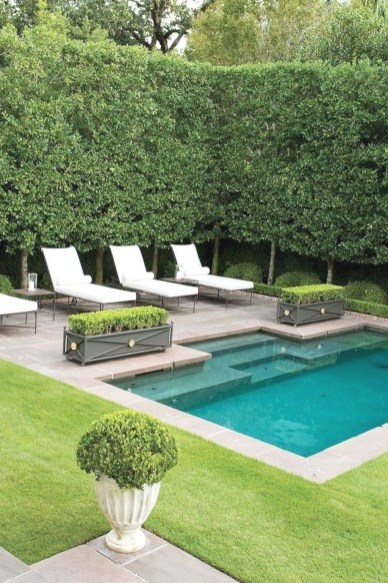 Landscaping Ideas For Backyard Swimming Pools26
