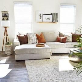 Amazing Minimalist Living Room29