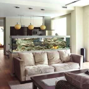 Awesome Aquarium Partition Ideas03