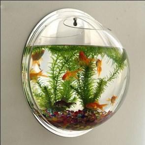 Awesome Aquarium Partition Ideas05