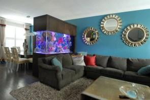 Awesome Aquarium Partition Ideas07