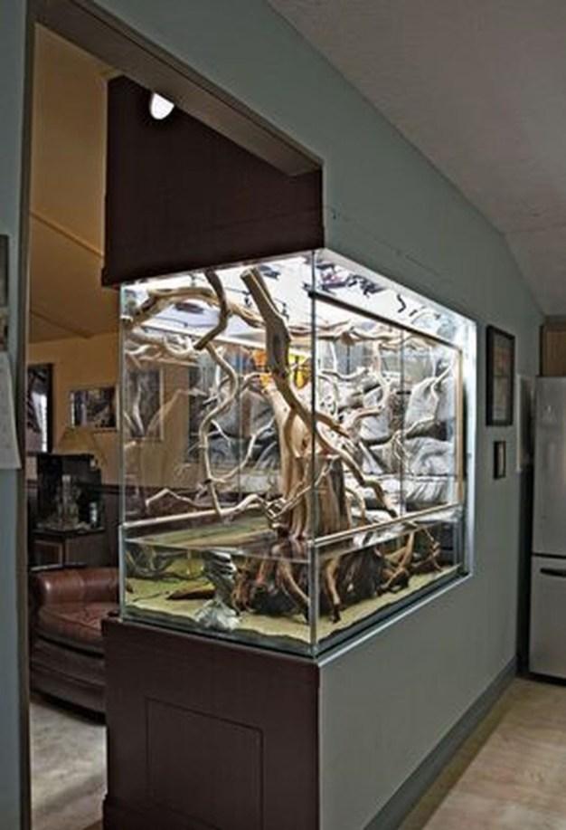 Awesome Aquarium Partition Ideas17