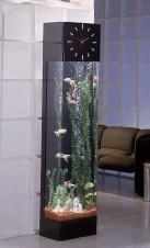 Awesome Aquarium Partition Ideas24