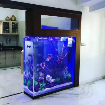 Awesome Aquarium Partition Ideas28